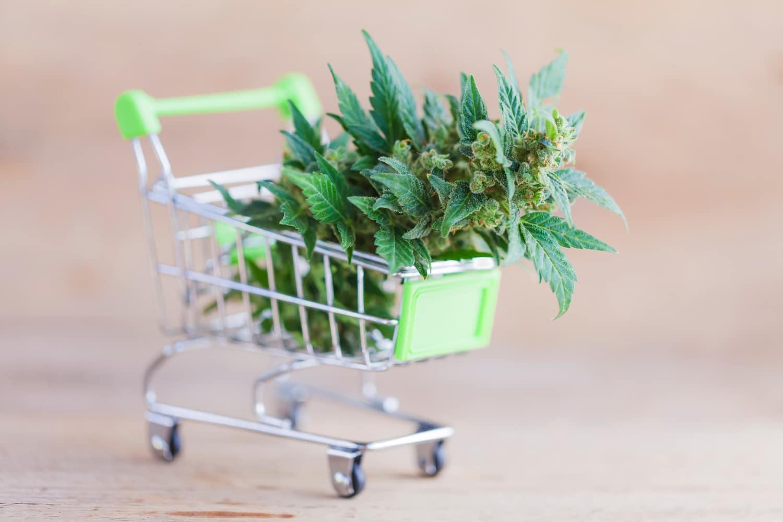 cannabis retail shopping